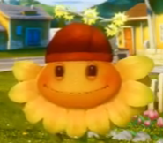 Sundrop Head