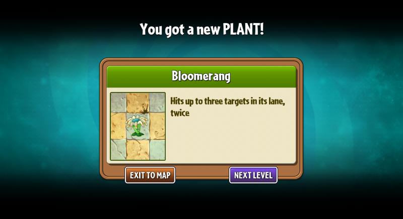 Getting Bloomerang