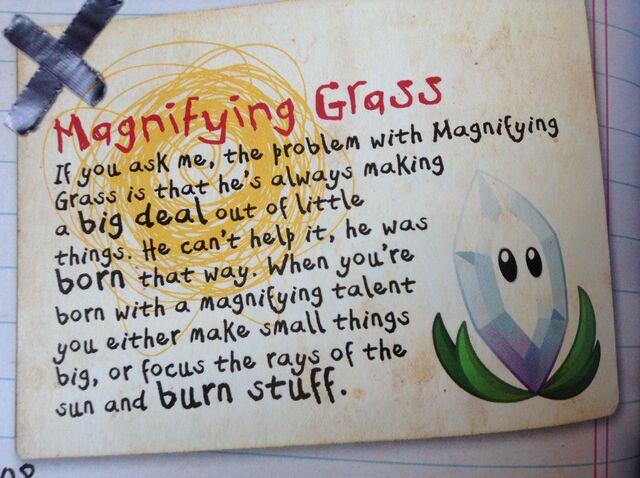 File:Magnifyinggrass.jpg
