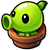 Peashooter sprout 1