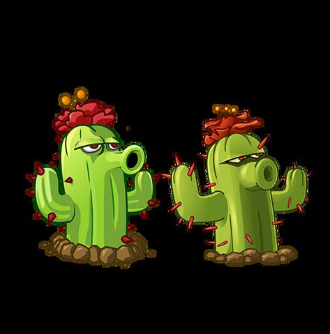 File:Cactus Vs Cactus.png