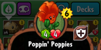 Poppin' Poppies/Gallery