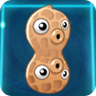 File:Pea-nut2.png