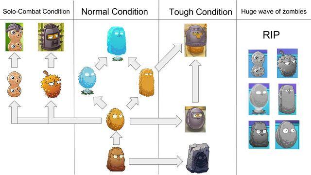 File:Nuts Evolution.jpg
