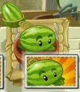 Melon-pultgivingBoostedSeedPacket