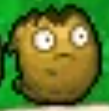 File:PVZ1DS Wall-nut Second Degrade.png