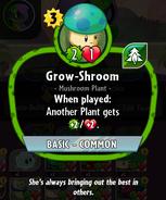 Grow-shroom description