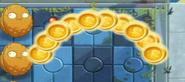 10 coins