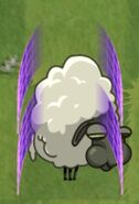 Sheep Moonflower Forcefield