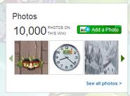 10000 photos