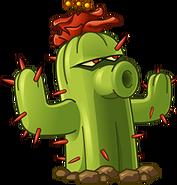 381 cactus