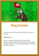Flag Online