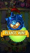 Wallnut victory