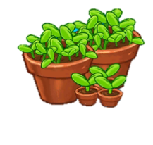 File:25 Sprouts.png