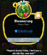 BloomerangHDescription
