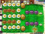 Gold farmin in Big Timez
