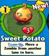 Receiving Sweet Potato
