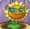 File:Sunflower-costum.jpg