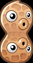 HD peanut2