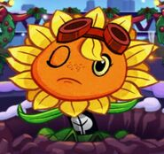 Solar Flare is in Ouch! Mood