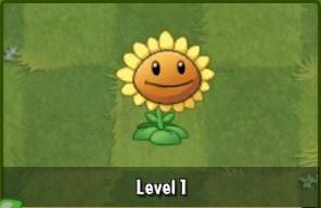 File:SunflowerAlmanac.jpg