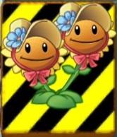 File:EndangeredTwinSunflower.jpg