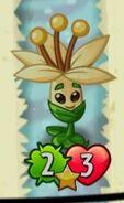 TintedGrayMayflower