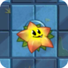 Starfruit2C