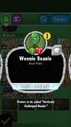 Weenie Beanie Description