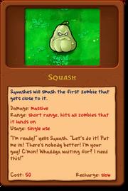 New Squash.png