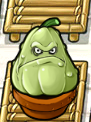 File:SQUASHZENGARDEN.png