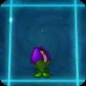 Shrinking Violet2