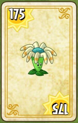 File:Bloomcard.jpg