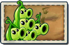 File:Pea Pod New Wild West Seed Packet.png