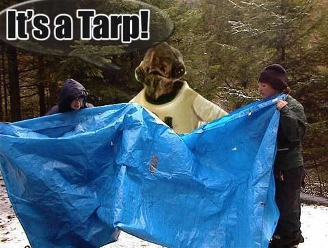 File:ITS A TARP.jpg