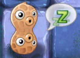 File:Sleeping Pea-nut.jpeg