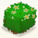 Square flower bush