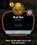 Wall-Nut description