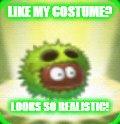 File:Small Chestnut Team Meme.jpg