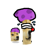 File:Scaredy-doge.png