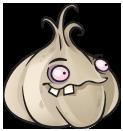 Garlic21
