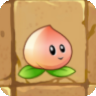 File:Peach new.png