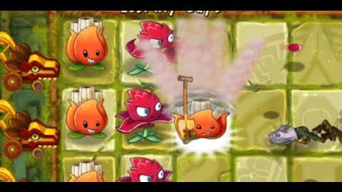 Plants vs Zombies 2 - Lost City Day 5 - A.K.E
