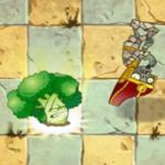 Vigorous Broccoli PF4
