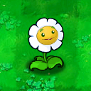File:MarigoldBox.png