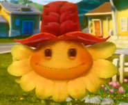 Autumn Snap Cap