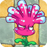 File:Anemone11.png
