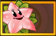 Pinkstarfruit Legendary Seed Packet
