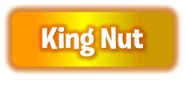 PvZ2 Kingnut WordmarkbyKh07