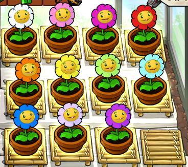 File:All zen garden marigold colors.png